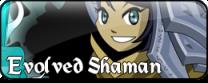 EvolvedShaman-tiny